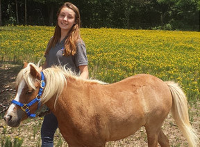 equine therapy in oklahoma